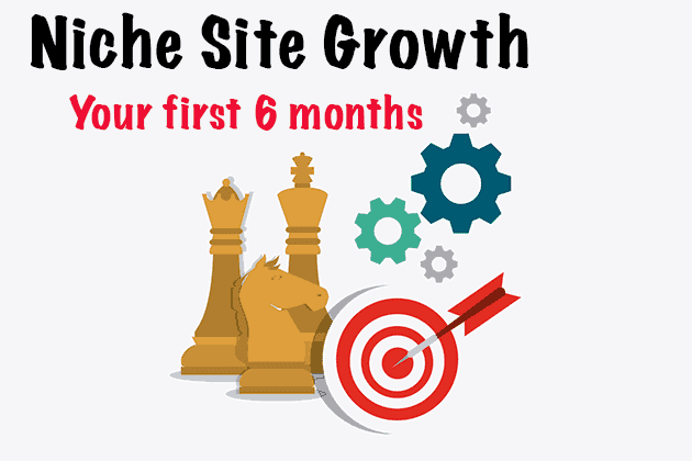 first 6 months of a niche site