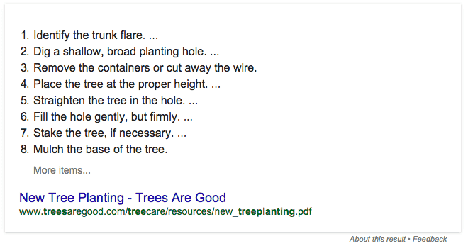 Google's quick answer for how to plant a tree