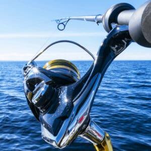 Fish reel